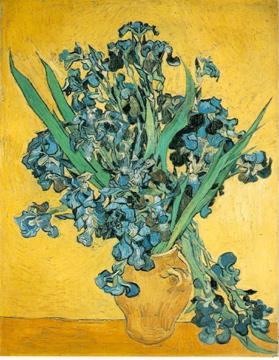 Van Gogh''s Irises