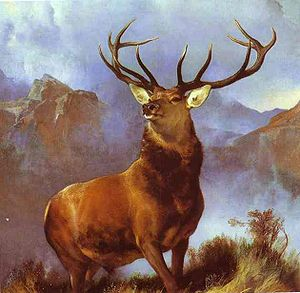 Monarch of the Glen by Edwin Landseer
