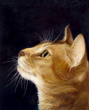 Cat Portraits by Cat Artists