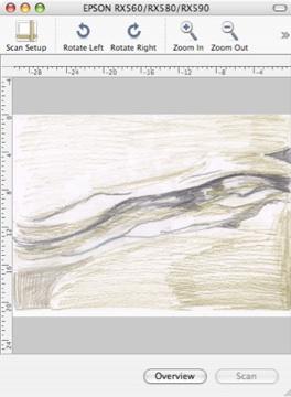 Designer Art Sketch