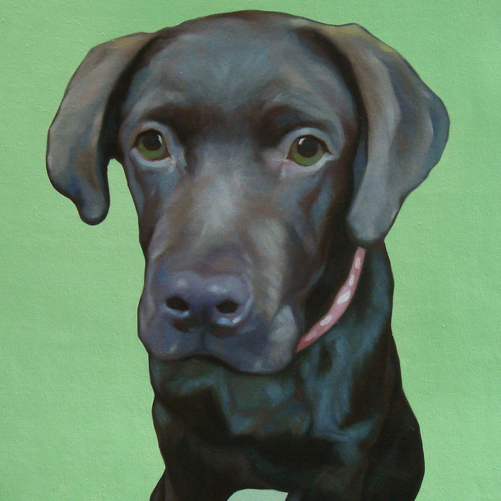 Dog Portrait by Top Portrait Artist