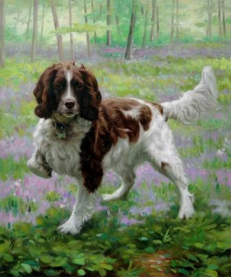 Pet Portraits by Pet Artists