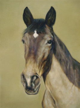 Horse Portrait by Fabulous Masterpieces