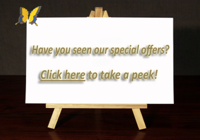 Special Offers on Art Reproduction